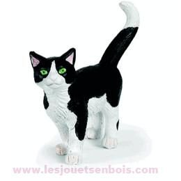 Chat Noir et blanc européen