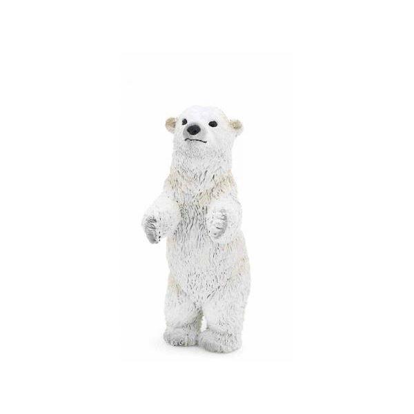 Bébé Ours polaire debout