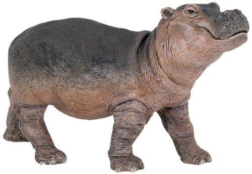 Bébé Hippopotame
