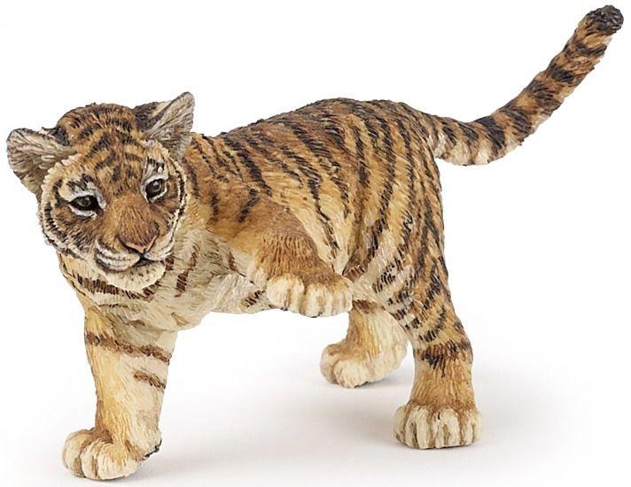 Bébé Tigre patte levée
